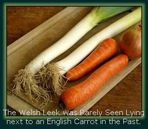 Leeks & Carrots can now lie together & can now even be planted in the same beds!
