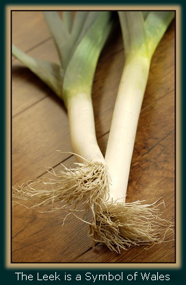 The Leek is a Symbol of Wales